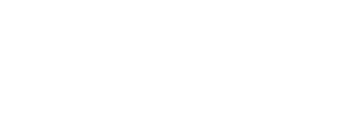 Professional Chimney and Fireplace Services