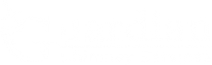 Guardian Chimney Services